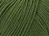 ETROFIL AMIGURUMI (60% орг.хлопок,40% акрил,50гр/145м) 70467 (Аспарагус)