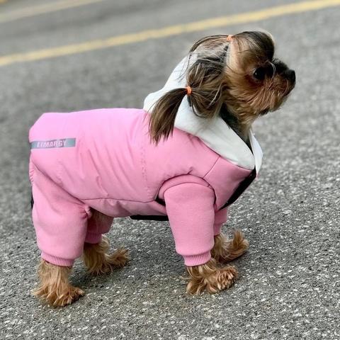 007 LM - Комплект костюм и куртка для собак