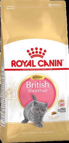 Для котят породы британская короткошерстная в возрасте от 4 до 12 месяцев
