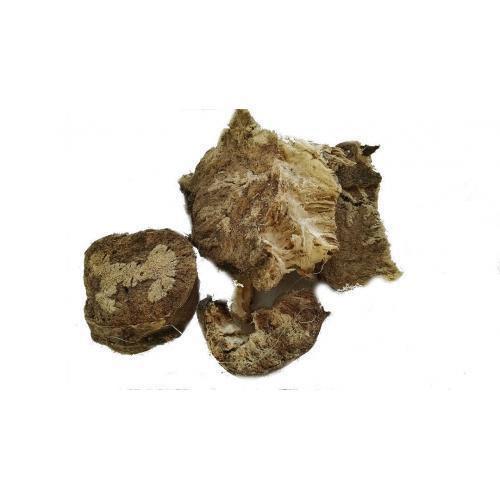 Травы Тамус (Адамов корень) dioscorea-577.jpg