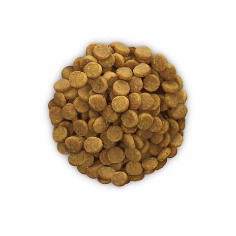 купить хиллс Hill's™ Prescription Diet™ Feline k/d™ Kidney Care with Chicken сухой корм для взрослых кошек, диетический рацион при заболеваниях почек, МКБ (оксалаты, ураты)  1.5 кг