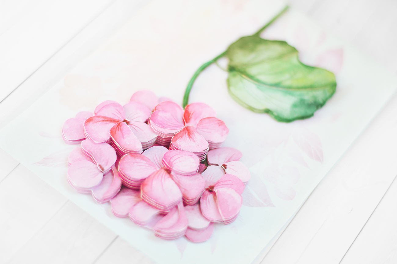 Розовая гортензия - готовая работа, вид сверху