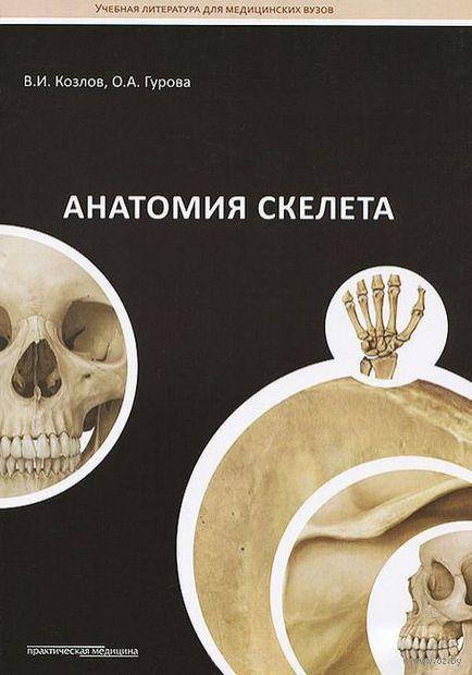 Все до 200 Анатомия скелета анатомия_скелета.jpg