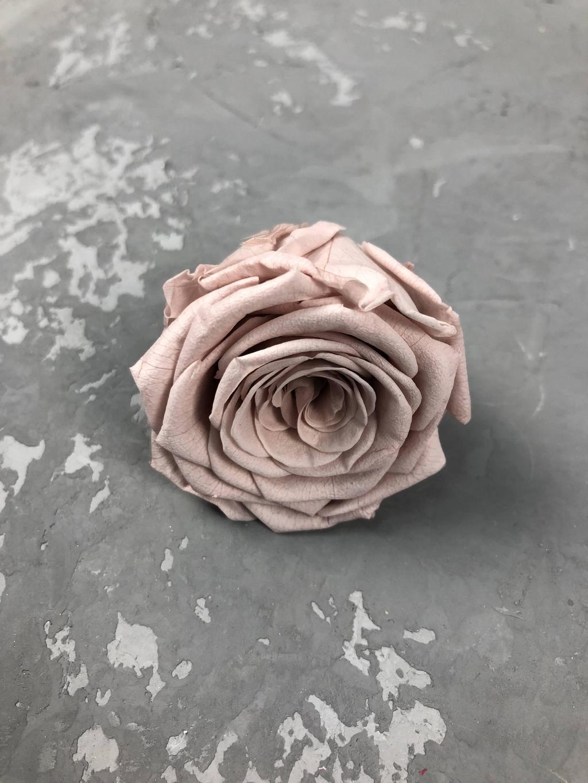 Роза классическая светло-коричневая d=5,5 см