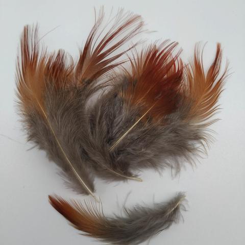 Перья фазана  4-8 см., 10 шт. (вид 3)
