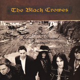The Black Crowes / The Southern Harmony And Musical Companion (2LP)