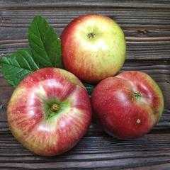 Яблоки сладкие Лобо (1 кг)