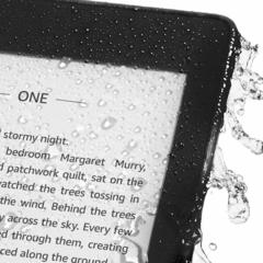 Электронная книга Amazon Kindle Paperwhite 2018 (бирюзовый)