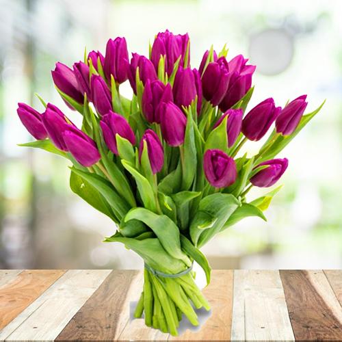 Купить букет из фиолетовых, пурпурных тюльпанов 25шт. Пермь