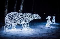 Световой Медведь
