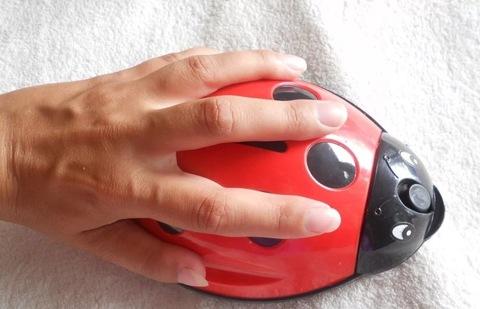 Щётка роликовая для коврового покрытия, 2 ролика, цвет МИКС