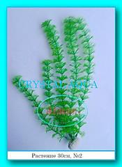 Растение 30см №2