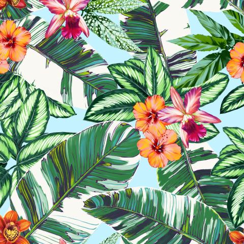 орхидеи, гибискус и листья банана_02