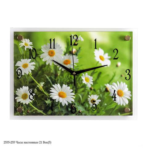 2535-255 Часы настенные