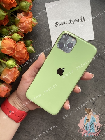 Чехол iPhone 11 Pro Max Glass Silicone Case Logo /mint gum/