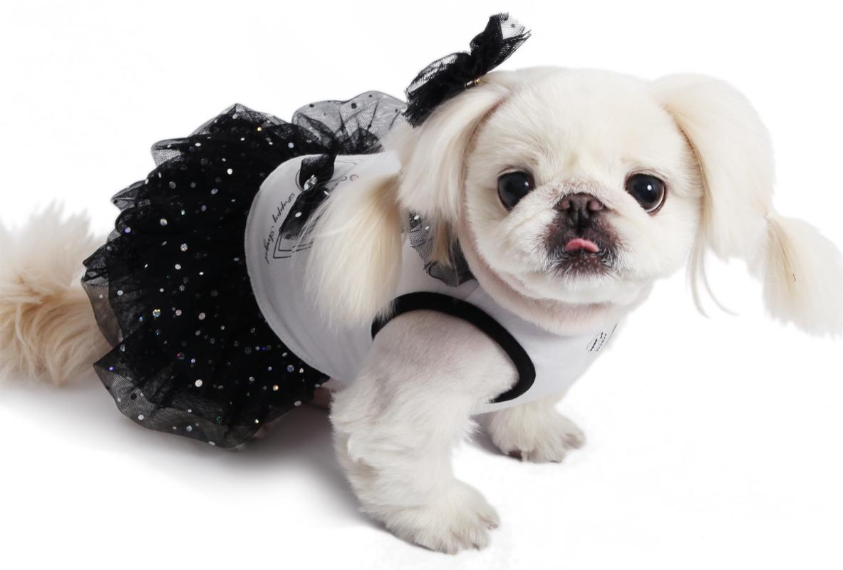 вечернее платье для собак