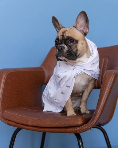 Шейный платок фирменный