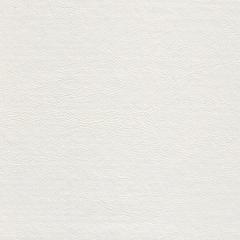 Искусственная кожа Pancho eco white (Панчо эко уайт)