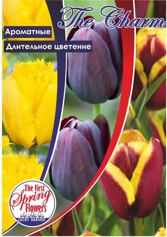 Луковицы Тюльпана Триумф Смесь The Charm (Шарм)  TM Jan de Wit en Zonen B.V. ( количество в упаковке 3 луковицы)