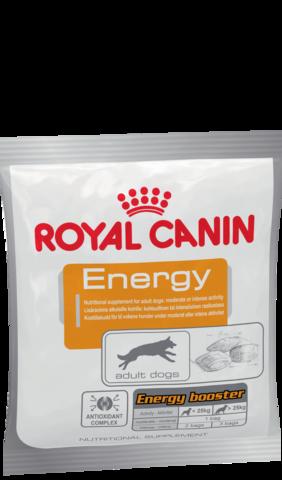 Royal Canin ENERGY дополнительная энергия для взрослых собак