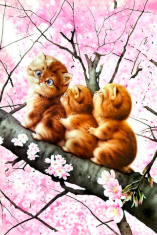 Алмазная Мозаика 20x30 Котята на дереве Сакуры (арт. JS20250)