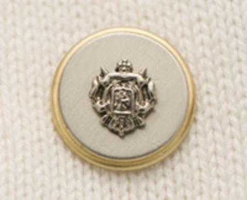 Пуговица с гербом, золотая кайма с серебряным фоном, 20 мм