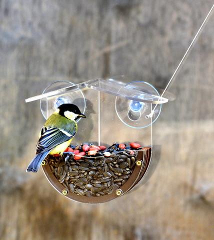 Кормушка для птиц на окно в Беларуси