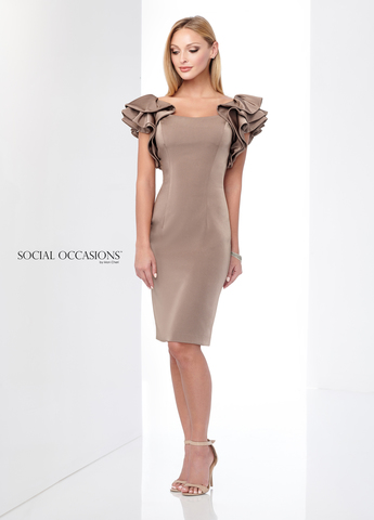 Social Occasions 218816