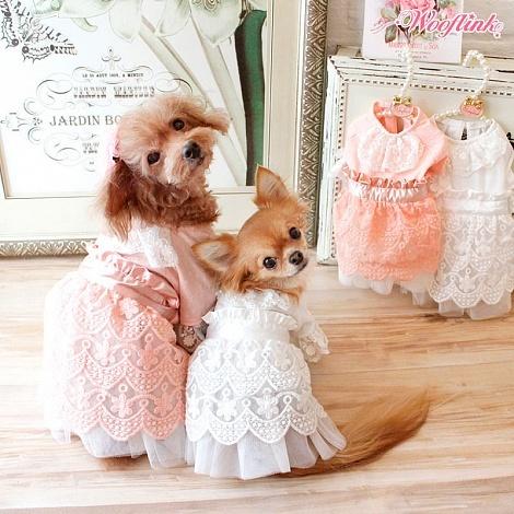 купить платье для собаки