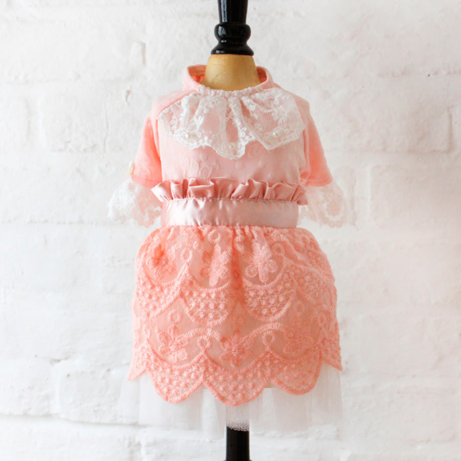 120 W Платье для собак DREAM