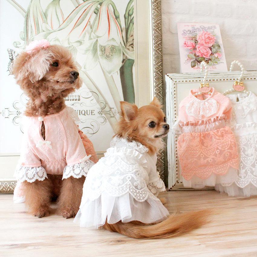 нарядное платье для маленьких собак