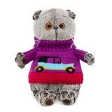 Кот Басик в свитере с машинкой