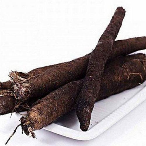 Травы Чернокорень лекарственный cynoglossum-root-609.jpg