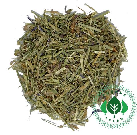 Астрагал шерстистоцветковый трава
