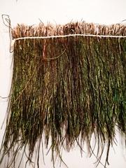 Бороздки  перьев  павлина h-16-20 см., на нитке, натуральные