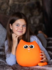 Мягкая игрушка-подушка Gekoko «Кот Огонек» 1
