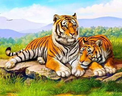 Алмазная Мозаика 40x50 Тигр и тигрица отдыхают на камне (арт. GA70948)