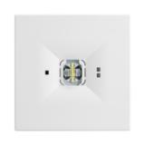 Светильники аварийного освещения помещений с высокими потолками ONTEC D F1 TM Technologie