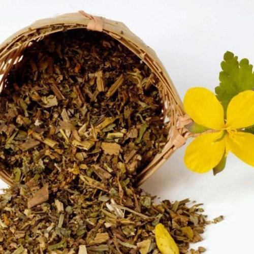 Травы Чистотел chelidonium-blossom-616.jpg