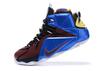 Nike LeBron 12 'What The Lebron'
