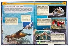 Книга Энциклопедия Моря и океаны 02106-3 Умка