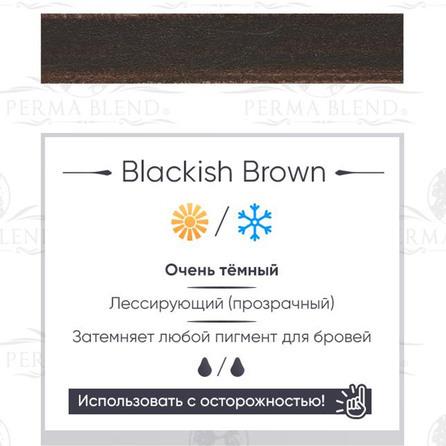 """BLACKISH BROWN"" пигмент для бровей  и глаз Permablend"