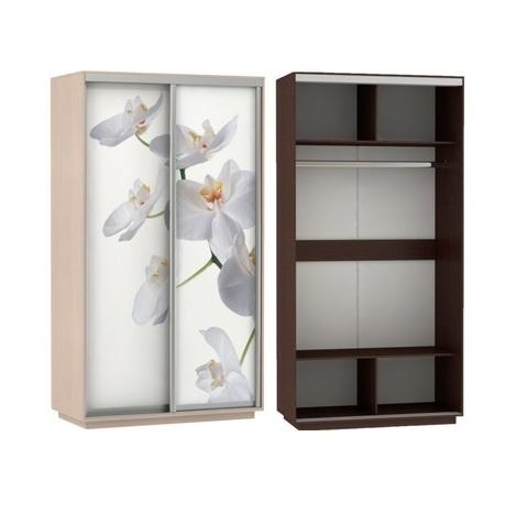 Шкаф-купе двухстворчатый Хит Фотопечать Орхидеи E1 дуб молочный