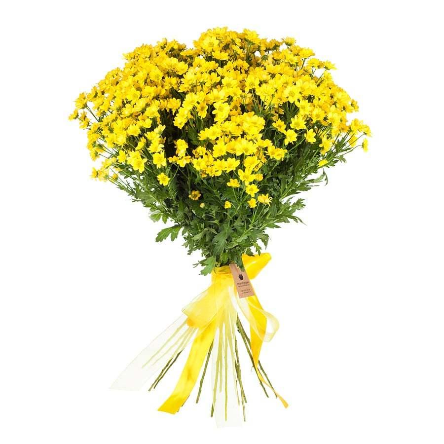 Букет из 25 желтых сантини