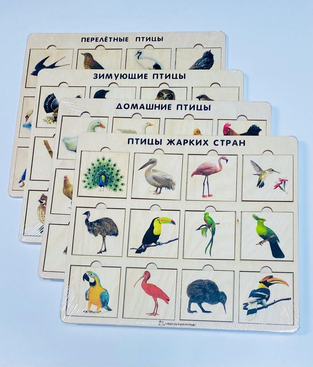 Птицы. 4 таблицы.