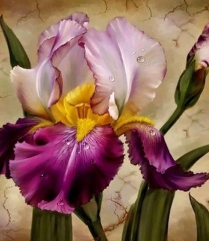 Алмазная Мозаика 38x28 Фиолетовый цветок (арт. K1727)