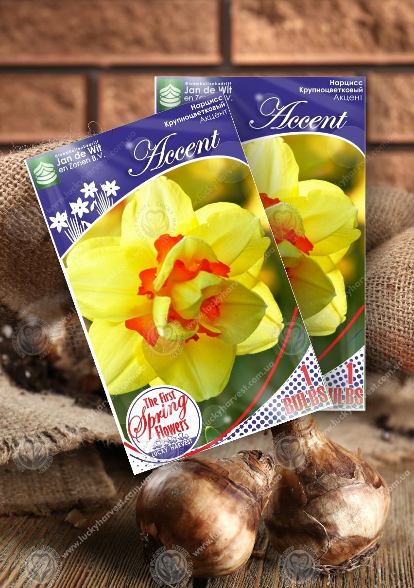 Луковицы Нарцисса  Крупноцветкового Махрового