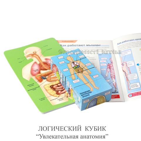 ЛОГИЧЕСКИЙ КУБИК «Увлекательная анатомия»