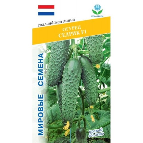 Семена Огурец Седрик F1 (Vita Green)