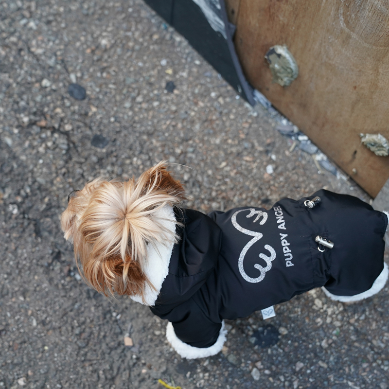 434 PA - Комбинезоны для собак